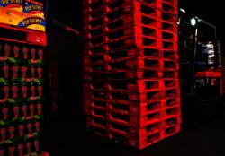 International Production & Processing Expo Exhibitor